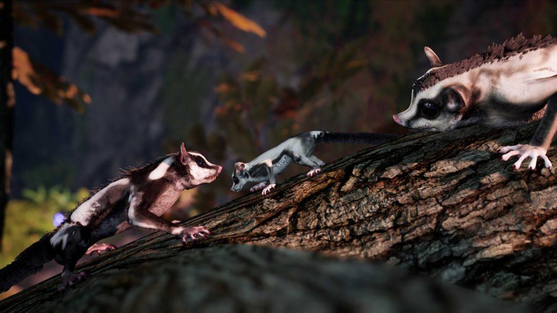 Away: The Survival Series llega a PlayStation 5 a final de verano